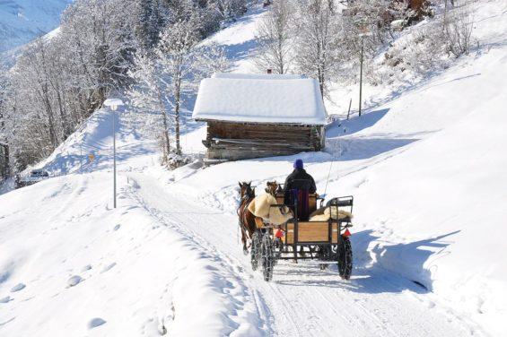 Pferdeschlittenfahrten - Winterurlaub in Forstau, Salzburger Land